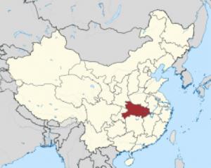 zongzi map